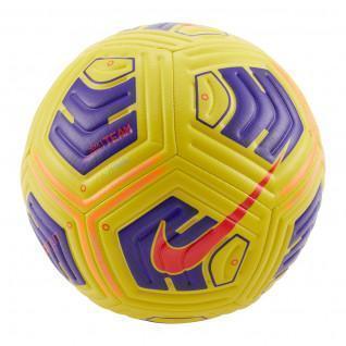 Pallone Nike Academy